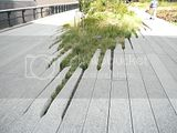 Interesting concrete on High Line